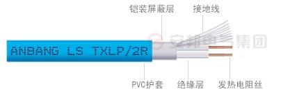 双导地热电缆结构